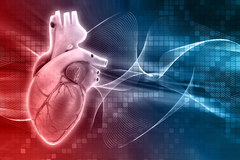 Chirurgia Generale, Vascolare e Angiologia